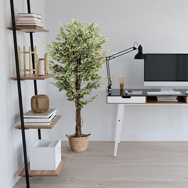 Kunstpflanze als Dekoration im Home Office oder Buero.